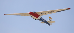 Slingsby T45 Swallow